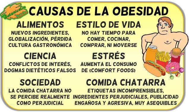 causas entorno ambiente obesogenico obesidad infantil epidemia comida chatarra basura salud publica educacion nutricional
