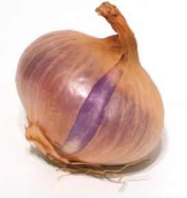 cebolla morada rica en quercetina