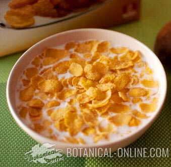 cereales desayuno maiz extrusionado con leche