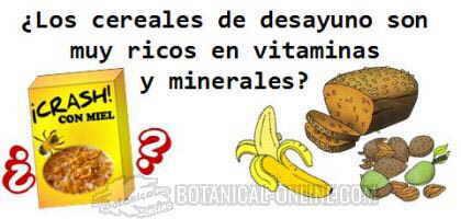 vitaminas y minerales de los cereales extrusionados de desayuno