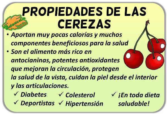propiedades medicinales de las cerezas de cerezo