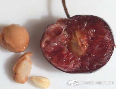 Foto de pastel de cerezas