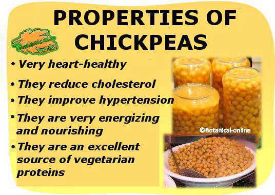 Main properties and benefits of chickpeas