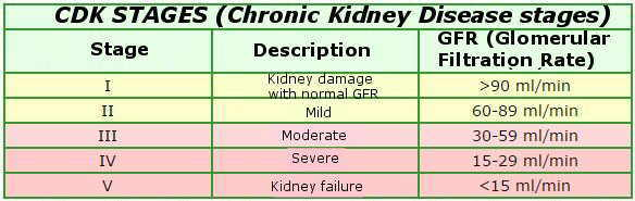 Classification of kidney failure