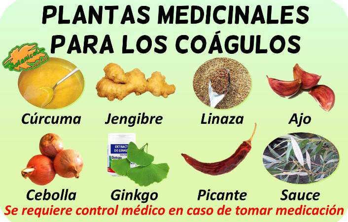 coagulos remedios caseros con plantas medicinales