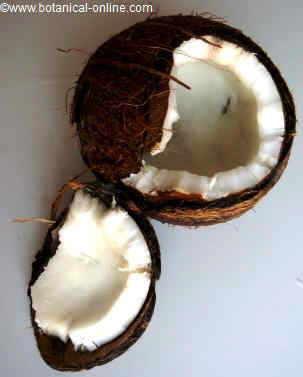 cuantas calorias tiene el coco laminado