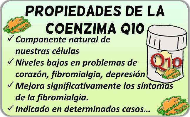 coenzima q10 propiedades beneficios