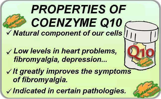 Medicinal properties of Coenzyme Q10 supplements