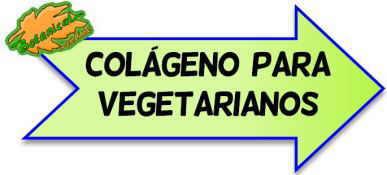 dieta vegetariana y colágeno
