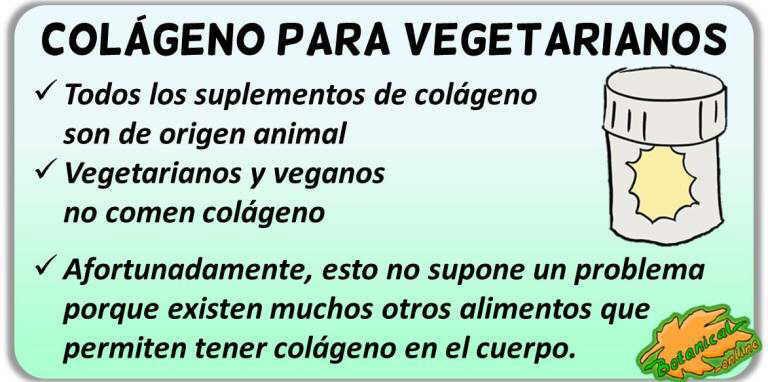 colageno proteina calidad mitos suplementos para vegetarianos y veganos