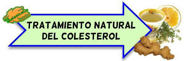 colesterol tratamiento natural