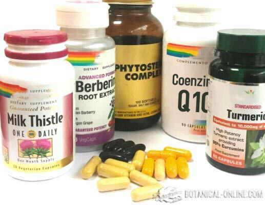 estatinas naturales suplementos nutraceuticos colesterol