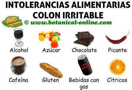 Alimentos prohibidos para el colon irritable - Alimentos no permitidos en el embarazo ...