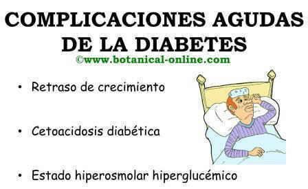 complicaciones agudas de la diabetes, cetoacidosis, retraso de crecimiento en niños y enfermedad cetoacidosis diabética
