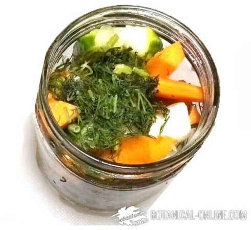 conservas verduras