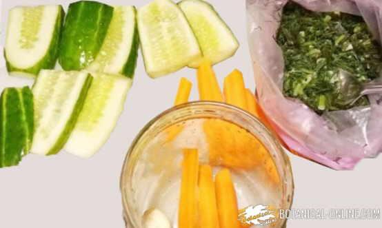 conservas verduras elaboracion receta