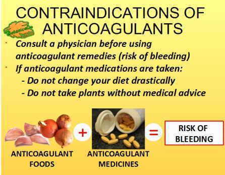 Contraindications of antibiotics