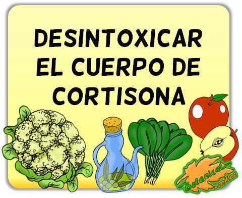 desintoxicar el cuerpo de cortisona