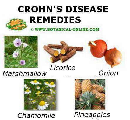 Crohn's disease main remedies