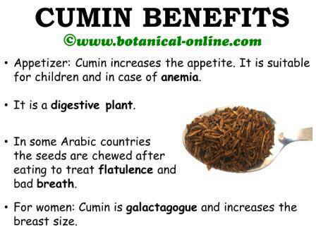 Cumin benefits medicinal properties