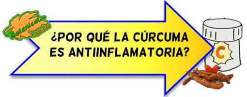 curcuma antiinflamatoria