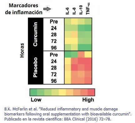 propiedades antiinflamatorias de la curcuma experimento resultados marcadores inflamacion