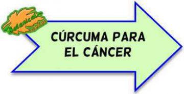 curcuma para el cancer