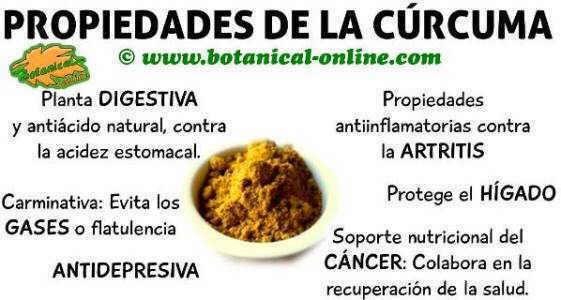 propiedades medicinales y beneficios de la cúrcuma