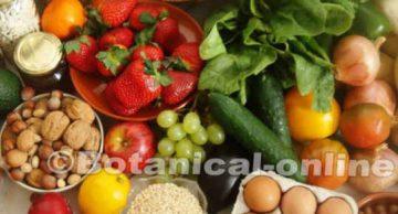 dieta rica en frutas y verduras