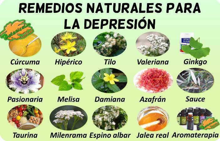 tratamiento natural de la depresión con plantas medicinales