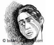 Falta de biotina puede producir depresión