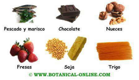 Alimentos no recomendados para la dermatitis