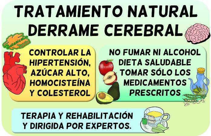 derrame cerebral tratamiento natural plantas medicinales y remedios