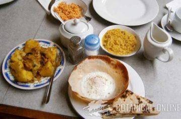 desayuno en sudeste asiatico sri lanka