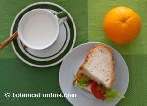 sandwich de queso con naranja y leche