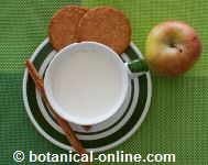 leche con galletas y manzana 310 calorias