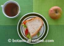 sandwich vegetariano fruta e infusion