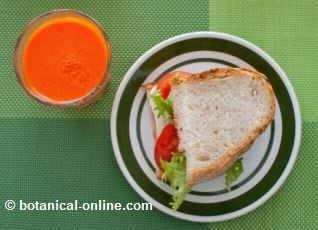 desayuno con sandwich vegetal y fruta