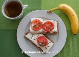 Desayuno para el Miercoles-http://www.botanical-online.com/fotos/recetas/desayuno-vegetariana-288kcal.jpg