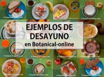 ejemplos de desayuno saludable y natural vegetariano opciones