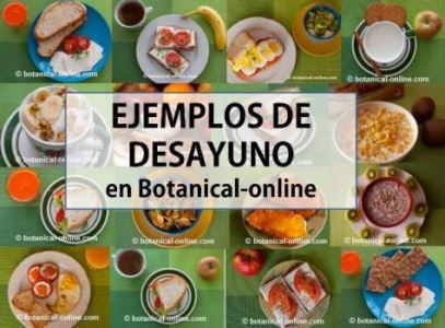 ejemplos de desayuno