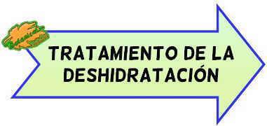 tratamiento deshidratacion