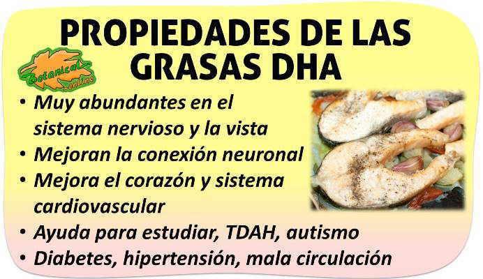 propiedades medicinales y beneficios de las grasas omega 3 dha