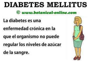 Que Es La Diabetes Related Keywords - Que Es La Diabetes