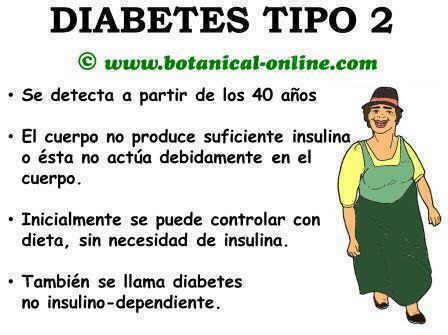 Diabetes en adultos