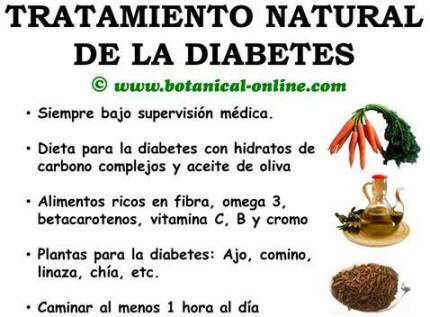 tratamiento natural diabetes remedios alimentos plantas