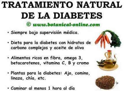 remedios naturales para la diabetes y dieta de colesterol