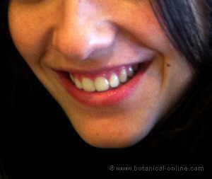dientes bonitos