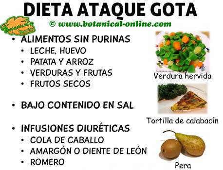 Dieta para el cido rico alto - Alimentos ricos en purinas acido urico ...