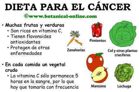 Dieta contra el cancer - Alimentos que evitan el cancer ...
